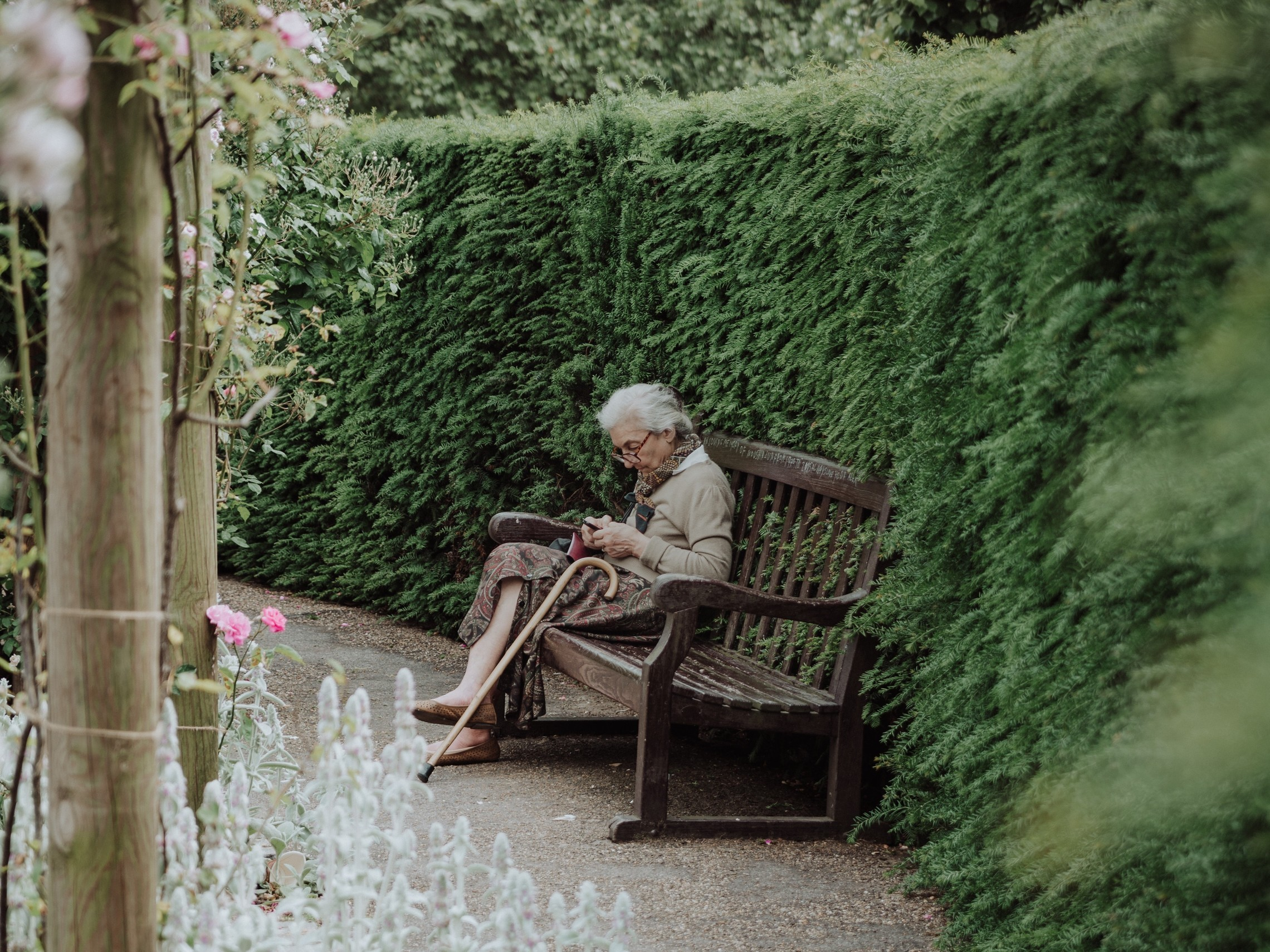 Old woman sits in a garden bench reading a book